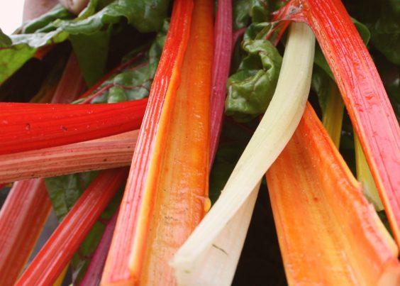 Recept Relish Salade